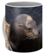 California Sea Lion Coffee Mug