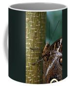 Caligo Atreus Coffee Mug