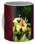 Call To The Sun Coffee Mug