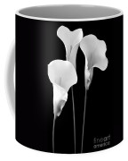 Calla Lilies In Triplicate In Black And White Coffee Mug