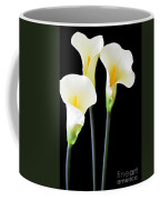 Calla Lilies In Triplicate Coffee Mug