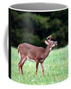 Calling Buck Coffee Mug