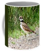 Calling Killdeer Coffee Mug