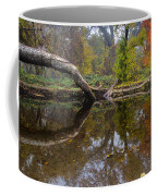 Calm On Big Chico Creek Coffee Mug