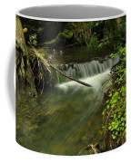 Calm Rapids Coffee Mug
