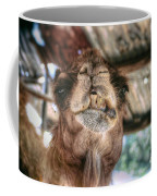 This Is What Happens When You Don't Floss Coffee Mug