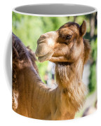Camel Portrait Coffee Mug