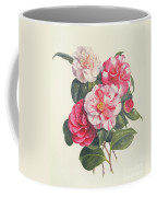 Camelias Coffee Mug by Augusta Innes Withers
