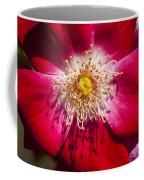 Camellia Coffee Mug by Carolyn Marshall