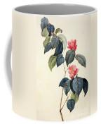 Camellia Japonica Coffee Mug by Pierre Joseph Redoute