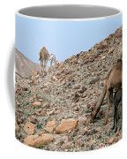 Camels At The Israel Desert -1 Coffee Mug