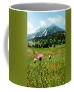Chautauqua Wildflowers Boulder Coffee Mug