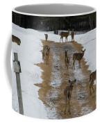Can Deer Read Coffee Mug