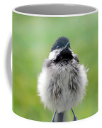 Close Encounters Of The Bird Kind Coffee Mug