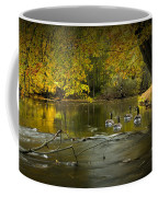 Canada Geese In Autumn Swimming On The Thornapple River Coffee Mug