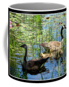 Canada Geese On Lily Pond At Reinstein Woods Coffee Mug