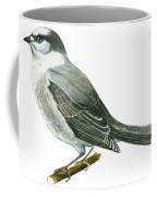Canada Jay Coffee Mug