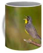 Canada Warbler Coffee Mug
