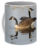 Canadian Swim Coffee Mug