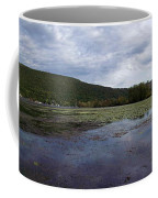 Canandaigua Lake Panorama Coffee Mug