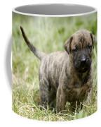 Canary Dog Puppy Coffee Mug