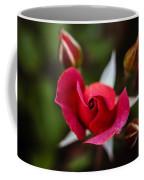 Candy Cane Roses Coffee Mug