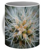 Cane Cholla Cactus Spines Coffee Mug