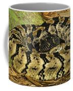 Canebrake Rattlesnake Coffee Mug