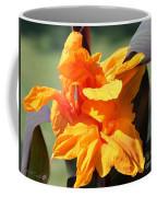 Canna Lily Named Wyoming Coffee Mug