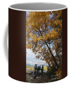 Cannon On Top Of Lookout Mountain Coffee Mug by Bruce Roberts