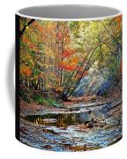 Canopy Of Color Iv Coffee Mug