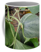 Cantaloupe  Coffee Mug