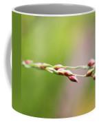 Cantigny - 60 Coffee Mug