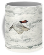 Canvasback Duck In Flight Coffee Mug