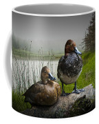 Canvasback Duck Pair By A Pond Coffee Mug