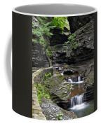 Canyon Cascade Coffee Mug