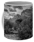 Canyon Del Oro No.48 Coffee Mug