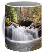 Canyon Waterfall-artistic Coffee Mug