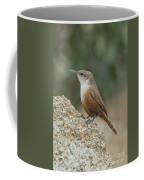 Canyon Wren Coffee Mug