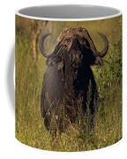 Cape Buffalo   #6851 Coffee Mug