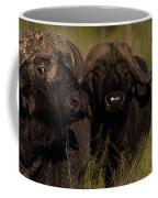 Cape Buffalo   #6884 Coffee Mug