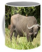 Cape Buffalo  Uganda Coffee Mug