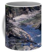 Cape Foulweather 1 Coffee Mug