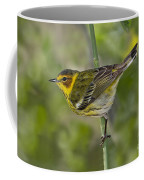 Cape May Warbler Coffee Mug