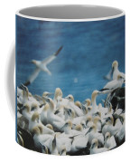 Cape St. Mary Ecological Resrve Coffee Mug