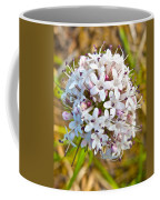 Capitate Valerian Near Savage River Cabin In Denali Np-ak Coffee Mug