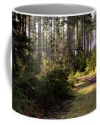 Capitol Forest Logging Road Coffee Mug