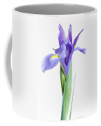 Captivate Coffee Mug