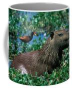 Capybara And Jacana Coffee Mug