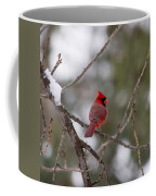 Cardinal - A Winter Bird Coffee Mug